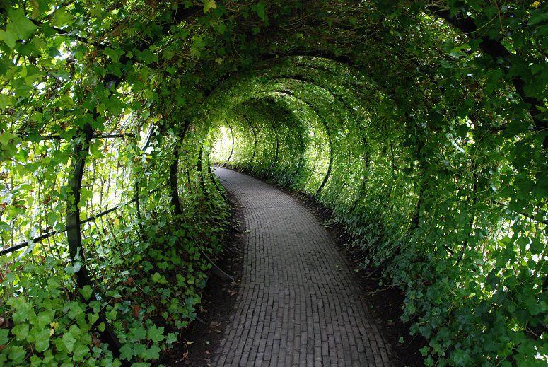 mw_poison_garden_tunnel