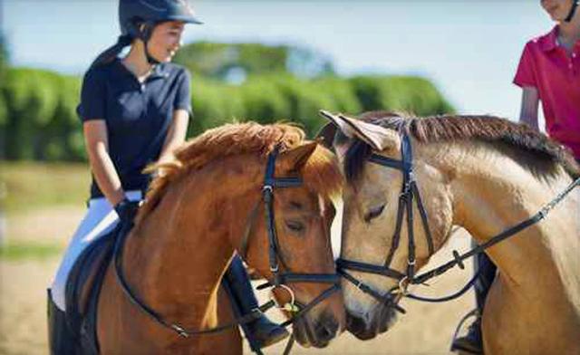 destiny-equestrian-complex-1214622-2125522-regular