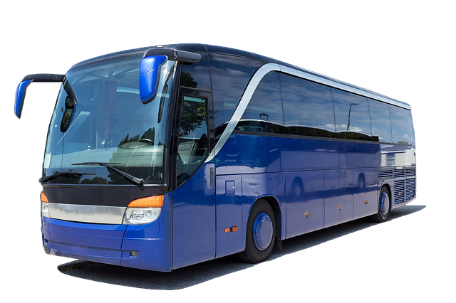 coach-3206326_640