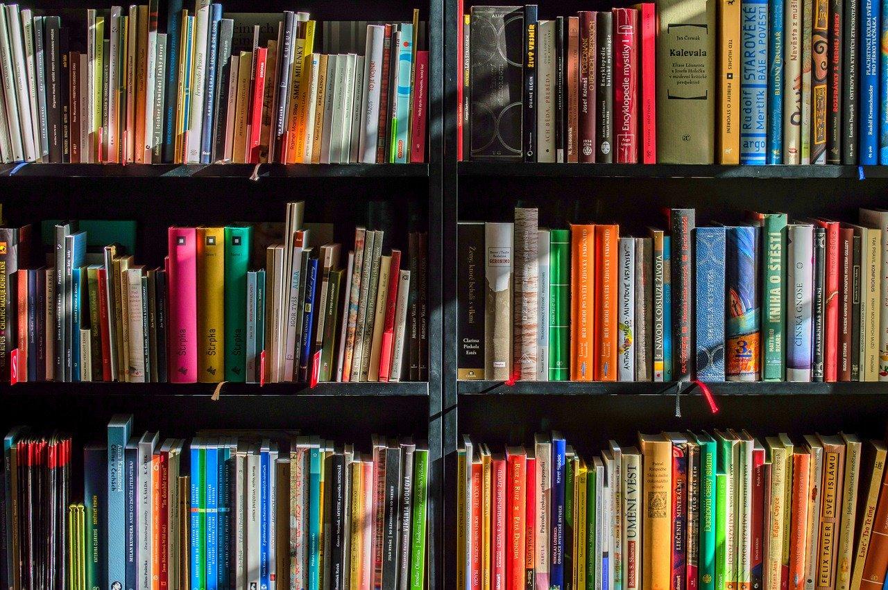 krakow-atrakcje.pl Jakie są zalety skupów książek online