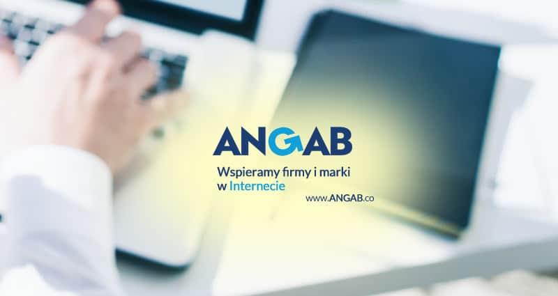 Angab-co-11